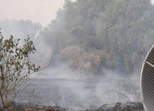 Busca gobierno de Silao evitar quema de pastizales