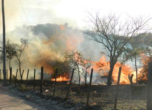 Afecta a Juventino Rosas la quema de pastizales