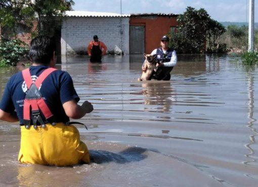 Busca PC nuevos espacios para refugios temporales en Apaseo el Grande