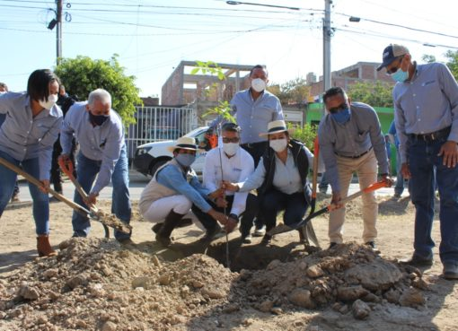 Adopta SAPAS camellón en Valle de las Huertas