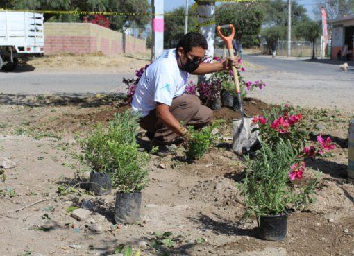 Reforestan parque lineal en Valle de las Huertas