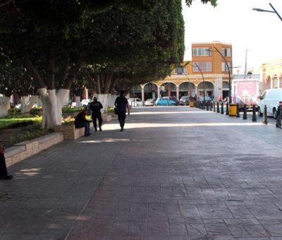 Aumenta afluencia de ciudadanos en calles de Cortazar